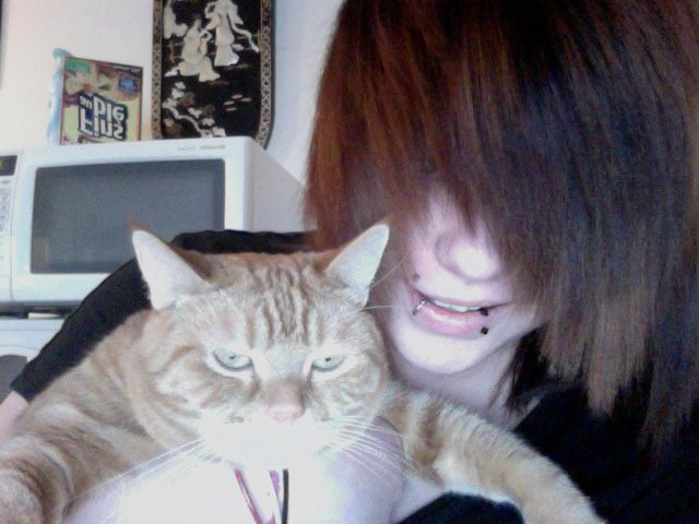 My darling cat.