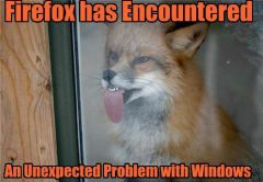 Firefoxencounter