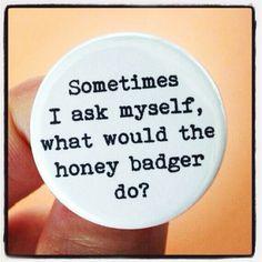 Honey badger Not care