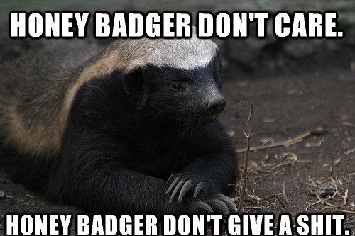 Well honey badger dont care